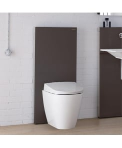 Monolith Plus for Floor-Standing WC - 114 cm