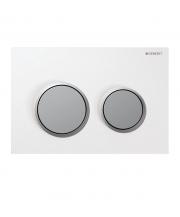 Omega20 Dual Flush Plate