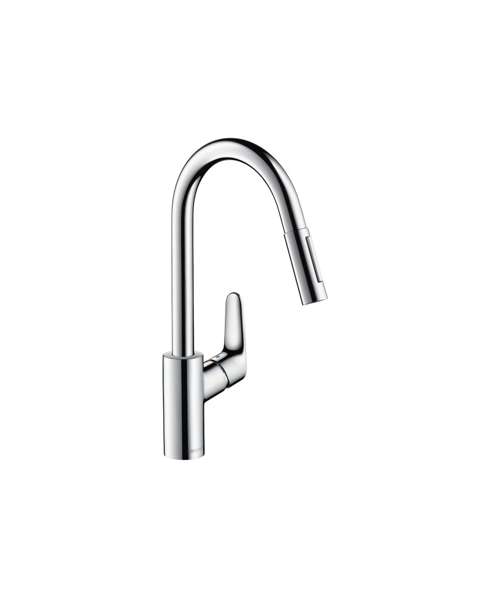 Hansgrohe Focus Single Lever Kitchen Mixer with Pull-Out Spray ...