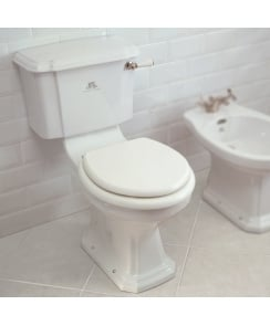 Lissa Doon Close Coupled Toilet